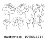peony flower and leaves line... | Shutterstock .eps vector #1040018314
