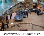trento  italy   november 19 ... | Shutterstock . vector #1040047105