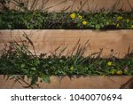 wooden pallet planks with grass ...