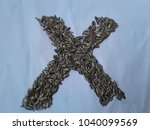 Small photo of Sun flower seed, Abjad background letter