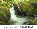 Fast  Waterfall  Moss  Ferns ...