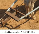 Traditional Plowing In The...