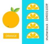 orange fruit icon set. slice in ... | Shutterstock .eps vector #1040311039