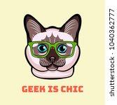 cute cat in smart glasses. cat... | Shutterstock . vector #1040362777
