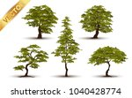 collection  tree realistic  on... | Shutterstock .eps vector #1040428774