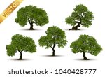 collection  tree realistic  on... | Shutterstock .eps vector #1040428777