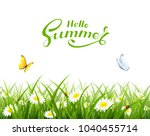 natural background with grass ... | Shutterstock . vector #1040455714