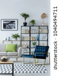 blue armchair next to sofa with ... | Shutterstock . vector #1040494711