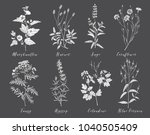 vector hand drawn collection of ... | Shutterstock .eps vector #1040505409