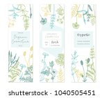 vector hand drawn floral cards... | Shutterstock .eps vector #1040505451
