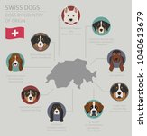dogs by country of origin.... | Shutterstock .eps vector #1040613679