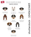dogs by country of origin.... | Shutterstock .eps vector #1040613685