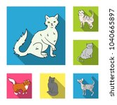 breeds of cats flat icons in... | Shutterstock .eps vector #1040665897