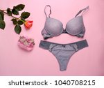 beautiful female underwear.... | Shutterstock . vector #1040708215