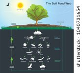 the soil food web is the... | Shutterstock .eps vector #1040731654