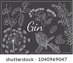 gin herbs recipe hand draw... | Shutterstock .eps vector #1040969047