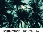 palm tree leaf background white ...   Shutterstock . vector #1040983267