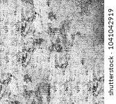 grunge black and white | Shutterstock . vector #1041042919