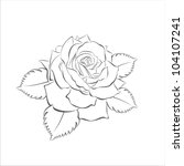 beautiful rose flower  vector... | Shutterstock .eps vector #104107241
