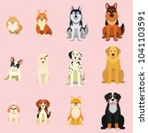 dogs  breed as icon cartoon... | Shutterstock .eps vector #1041103591
