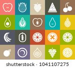 fruits icons  fresh strawberry  ... | Shutterstock .eps vector #1041107275