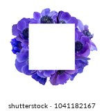 anemone bouquet with frame | Shutterstock . vector #1041182167