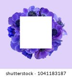 anemone bouquet with frame | Shutterstock . vector #1041183187