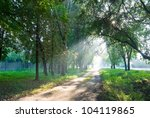 city park at the early morning | Shutterstock . vector #104119865