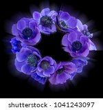 violet anemone bouquet on black ... | Shutterstock . vector #1041243097