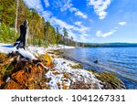 spring snow forest river shore... | Shutterstock . vector #1041267331