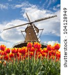 Windmill With Tulips In Holland