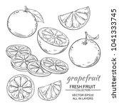 grapefruit vector set | Shutterstock .eps vector #1041333745