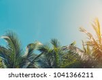 copy space of silhouette... | Shutterstock . vector #1041366211