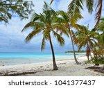 paradise beach on eleuthera... | Shutterstock . vector #1041377437