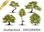 beautiful tree realistic  on a... | Shutterstock .eps vector #1041396904