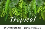 tropical leaves and plants.... | Shutterstock .eps vector #1041495139