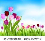 nature tulip spring banner | Shutterstock .eps vector #1041609949