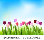 tulip spring banner card | Shutterstock .eps vector #1041609961