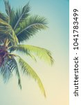detail of coconut trees with... | Shutterstock . vector #1041783499