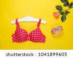 fashionable beautiful bra and... | Shutterstock . vector #1041899605