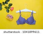 fashionable beautiful bra and... | Shutterstock . vector #1041899611