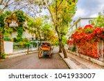 buyukada island street view.... | Shutterstock . vector #1041933007