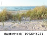 beach at the baltic sea | Shutterstock . vector #1042046281