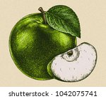 engrave isolated apple hand... | Shutterstock . vector #1042075741