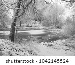 the forest on the shore of the... | Shutterstock . vector #1042145524