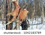 archer hunter with bow and... | Shutterstock . vector #1042183789