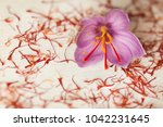 one saffron flower and a lot of ... | Shutterstock . vector #1042231645