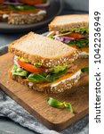 healthy homemade vegetarian... | Shutterstock . vector #1042236949