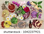 herbal medicine preparation... | Shutterstock . vector #1042237921
