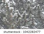 blizzard fir tree. | Shutterstock . vector #1042282477